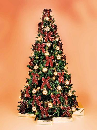 Christmas Tree Hire | Traditional Style | Fully Decorated