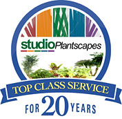 Studio Plantscapes - Top class service for 20 years